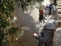Tala Abdallah - 8-5-3 (5)